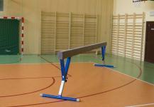 Gimnastikos buomas