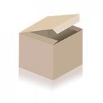 ACTi D81 Skaitmeninė kamera